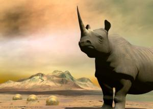 Rhinoceros art prints for sale - Do you really want to hurt me